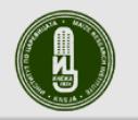 КНЕЖА 549 - заявка за нов сорт царевица