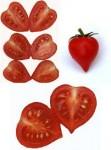 Отказ за регистрация на промишен дизайн за форма на домат