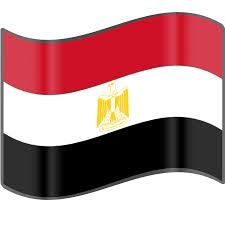 Интелектуална собственост Египет 2014